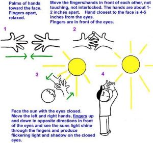 saccadic sunning
